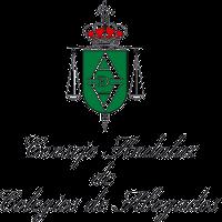 Nota Informativa: El Consejo Andaluz De Colegios De Abogados Pone En Marcha Su Hoja De Ruta Para La Mejora De La Justicia Y La Abogacía